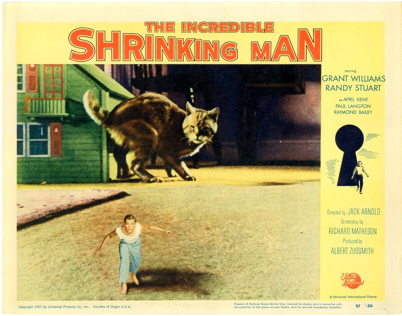 http://www.fourcolorcomics.com/sc/2069462-922?height=-1 Incredible Shrinking Man Poster